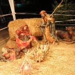 スペイン語で メリークリスマスとは、Feliz Navidad!!!