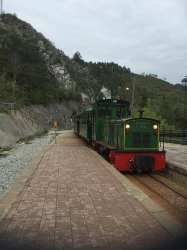 baga tren